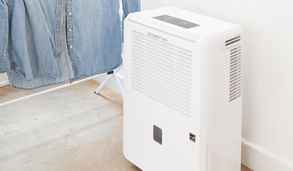 Why You Need A Dehumidifier for Increased Safety in Your Home
