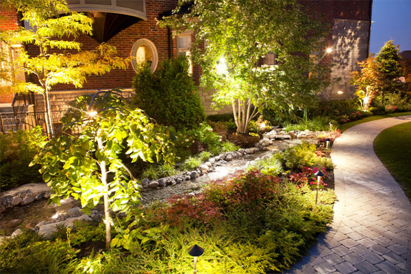 How To Give Your Backyard A Wild Look?